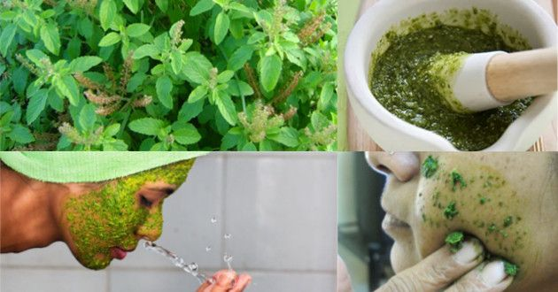 tulsi-for-face