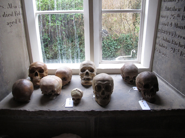 8. DAMIEN HIRST. Skulls display. Murderme collection