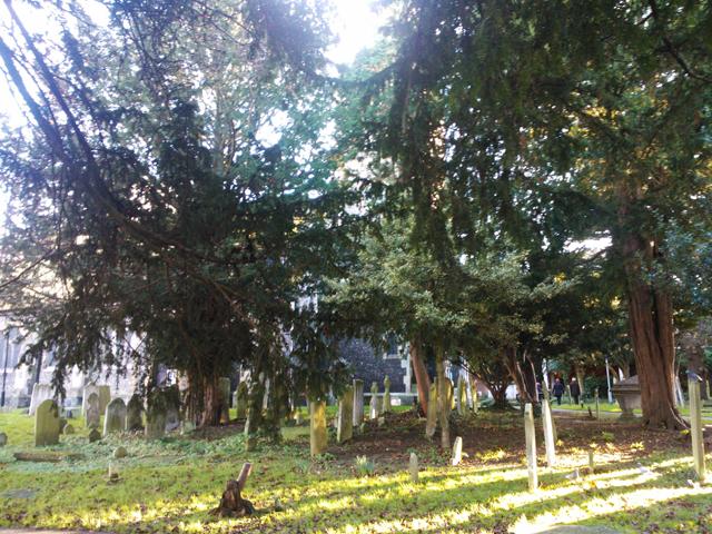 Grave.Yard3