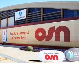 Largest Cricket Bat