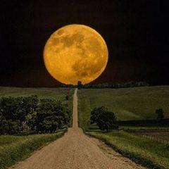 04.11. Večeras je mjesec pun.. Iskoristite njegovu silnu energiju