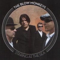 Record Review: Blow Monkeys - Staring At The Sea