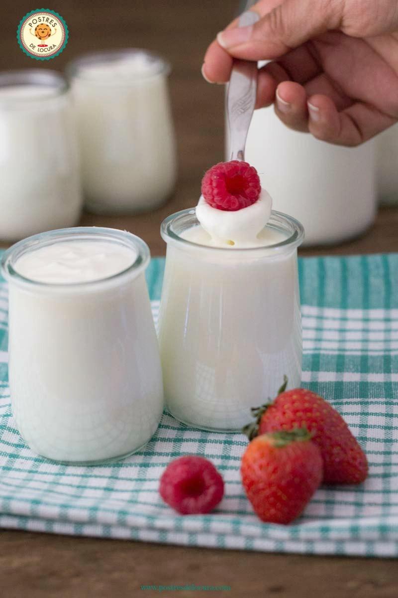 yogur griego casero