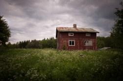 ...skogsvägen leder upp till ett ensamt hus på en äng...
