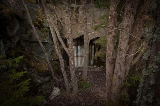En bit inne i skogen blir spåren tydliga...