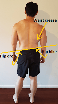 Normal Sleep Cycle Diagram Lateral Pelvic Tilt Posture Direct
