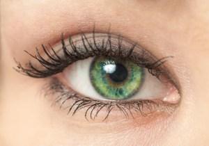 The eye, a posture sensor