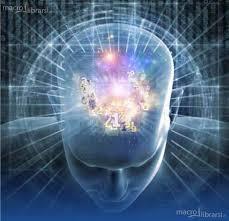 Sviluppo Cognitivo con Bemer®