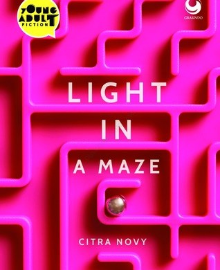 light in a maze citra novy