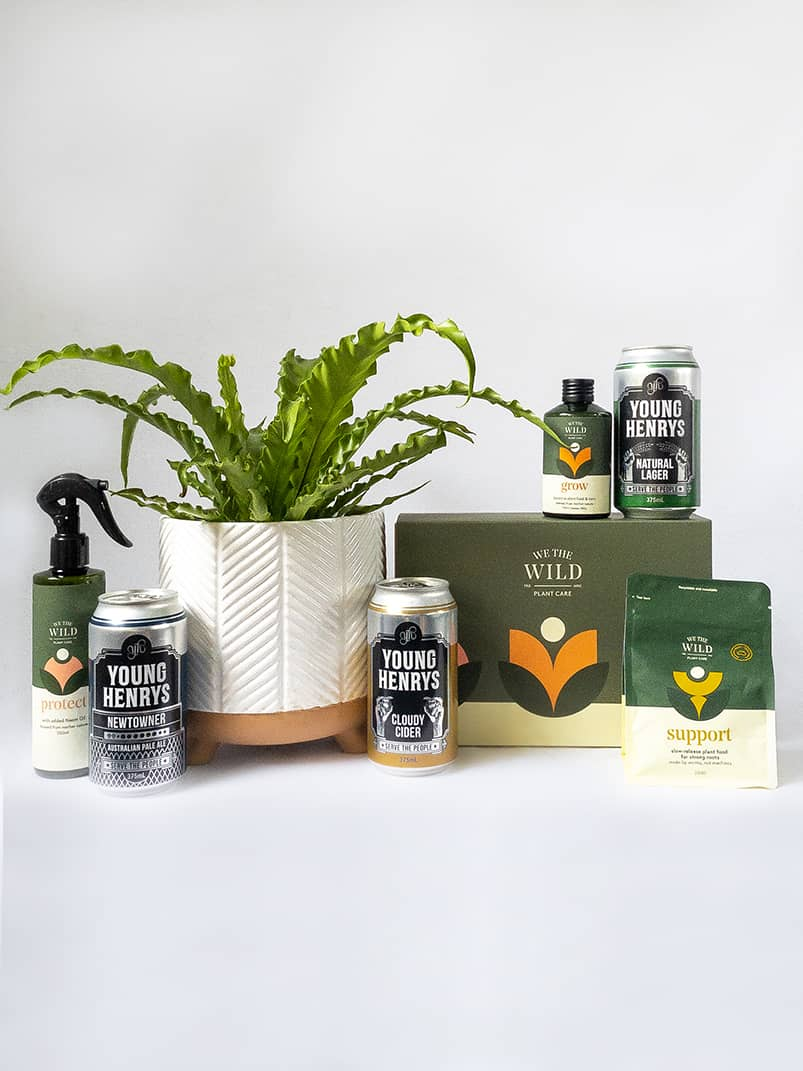 Your Plant Guy Gift Pack - Plant and Young Henrys 3 Pack with We The Wild Care Kit