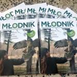"""Młodzi leśnicy stworzyli szkolną gazetkę """"Młodnik"""""""