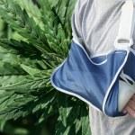 El Cannabis y la Artritis