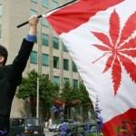 Canadá: Los pacientes ahora están autorizados para cultivar cannabis medicinal