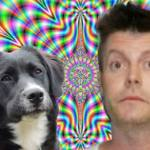 Un hombre bajo los efectos del LSD salva al perro del vecino de un incendio imaginario