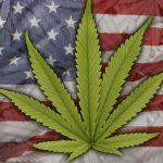 1 de cada 5 estadounidenses tendrán acceso a la marihuana de manera legal
