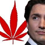 El primer ministro de Canadá, Justin Trudeau dice que la legislación a favor de legalizar la marihuana podría estar lista para el verano