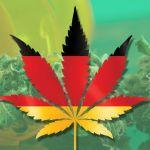 Investigadores de Berlin esperan reclutar a 25.000 consumidores de marihuana para un estudio masivo