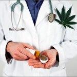 Desabasto de medicamentos de cannabis impide tratar a pacientes en el Estado de México