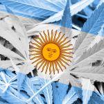 Consumo de marihuana en Argentina aumentó más de tres por ciento