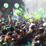 Miles marchan en Chile por el autocultivo de cannabis
