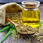 El negocio alimenticio del cannabis: el nuevo superalimento