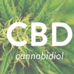CBD bloquea los sistemas de recompensa opiácea, por lo que puede ayudar a tratar este tipo de adicción