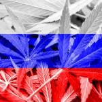 """Rusia lamentó la legalización del cannabis en Uruguay porque favorece a """"las mafias"""""""