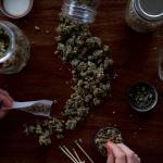 Dos nuevos estudios demuestran que la marihuana medicinal legal está sustituyendo el uso de drogas farmacéuticas adictivas en muchos pacientes