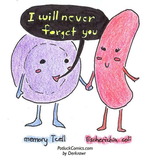 Infectious Love Affair