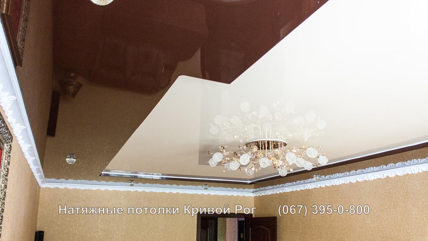 Натяжной потолок зал гостиная Кривой Рог Фото Цена
