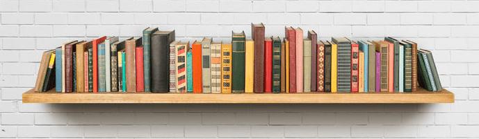 single_bookshelf_cropped