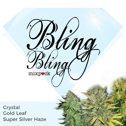 Bling Bling Feminized Cannabis Seed Mixpack