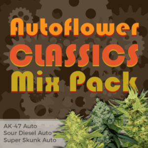 Autoflower Classic Cannabis Seed Mixpack