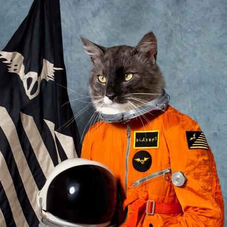 Según dicen, toda la temática del álbum gira al rededor de este gato