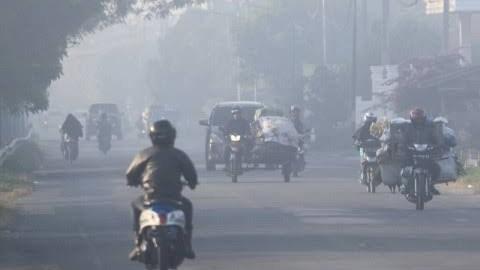 Bukan Hanya Covid-19, Kebakaran Lahan Mulai Mengancam Riau