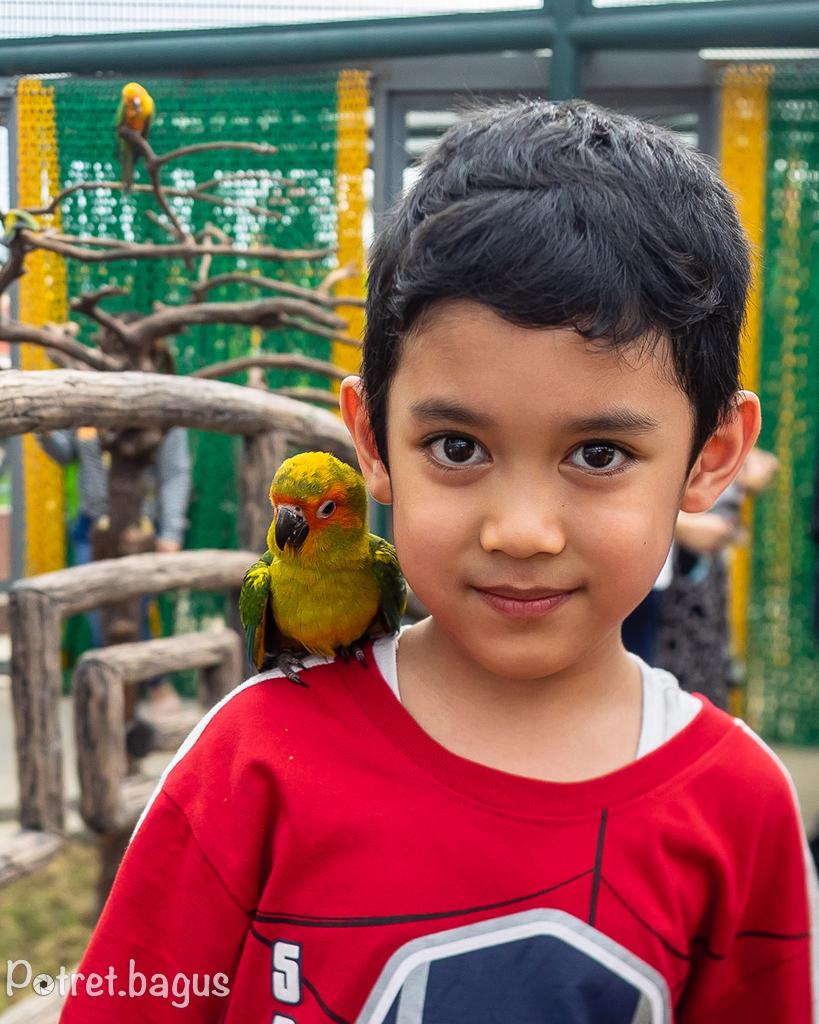 Bintang di Saloka Fun Park - potret bagus