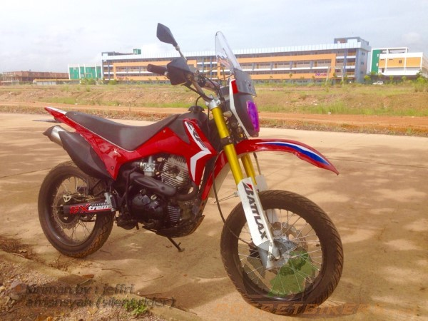 VIAR CROSS X ala CRF (3)