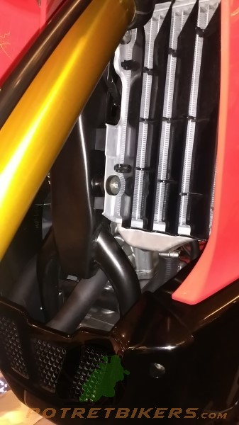 Honda CRF 250 Rally (13)