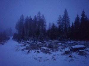 verschneiter Sonntagmorgen