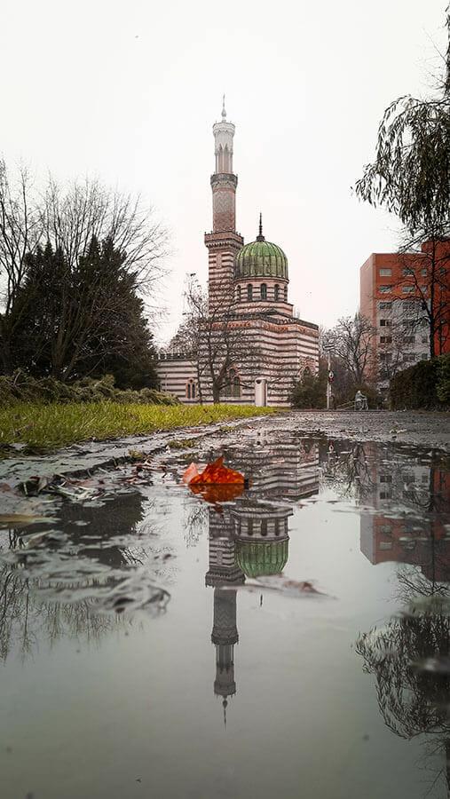 Ein Gebäude und dessen Spiegelung in einer Pfütze fotografieren.