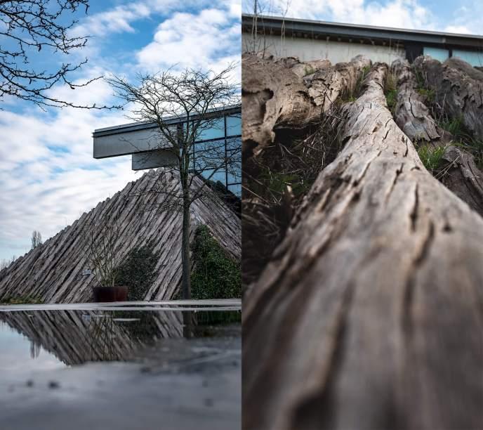 Die Biosphäre in Potsdam kannst du gut von aussen fotografieren. Du siehst hier eine Mischung aus Holz, Glas und Beton.