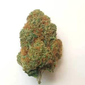 Mango Kush for sale