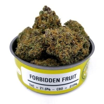 Space Monkey Meds Forbidden Fruit