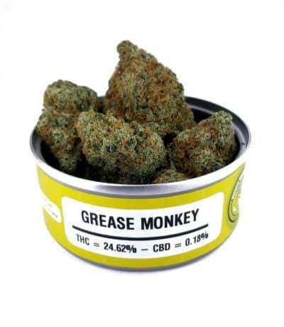 Space Monkey Meds Grease Monkey