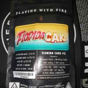 Jungle Boys Florida Cake