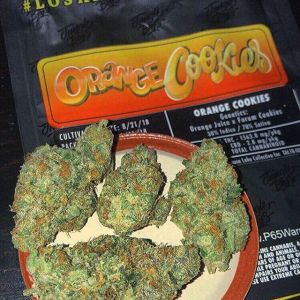Jungle Boys Orange cookies