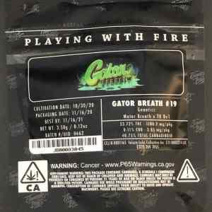 Jungle Boys GATOR BREATH #19
