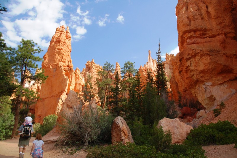 This little area enchanted me. I loved the way the hoodoos and trees, similarly-shaped, were all together in a garden of sorts.