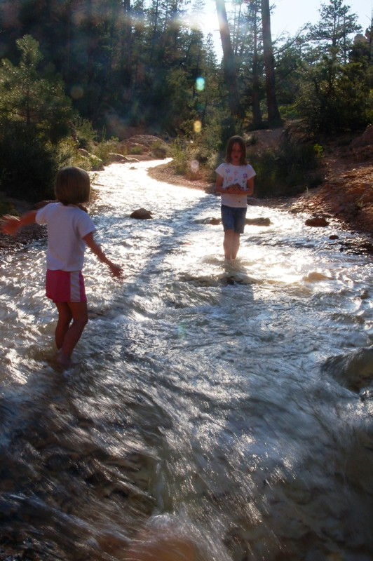 I loved the light on the creek. (My girls just liked the creek.)