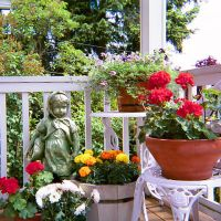 Floral Art Innovations: Balcony, Terrace, Verandah or Roof